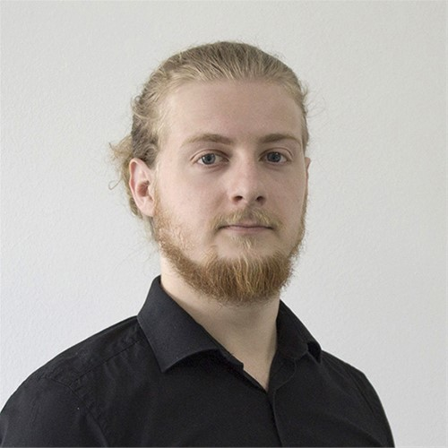 Branimir Habek